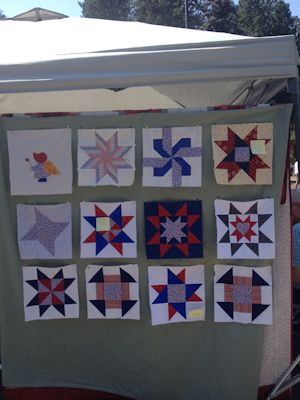 Patriotic blocks for next year's quilt show.